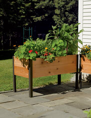 Elevated Garden Beds Raised Vegetable Gardens Gardenerscom