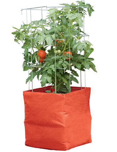 Colorful Tomato Grow Bag