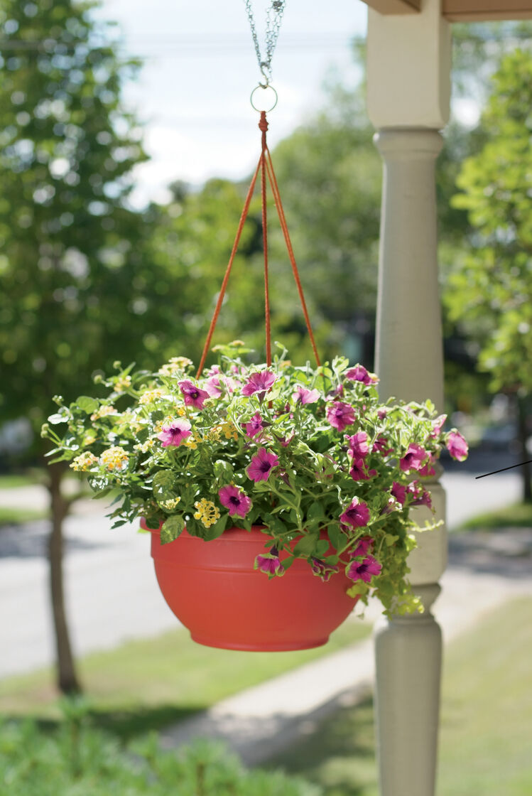 hanging baskets for plants and flowers self watering. Black Bedroom Furniture Sets. Home Design Ideas