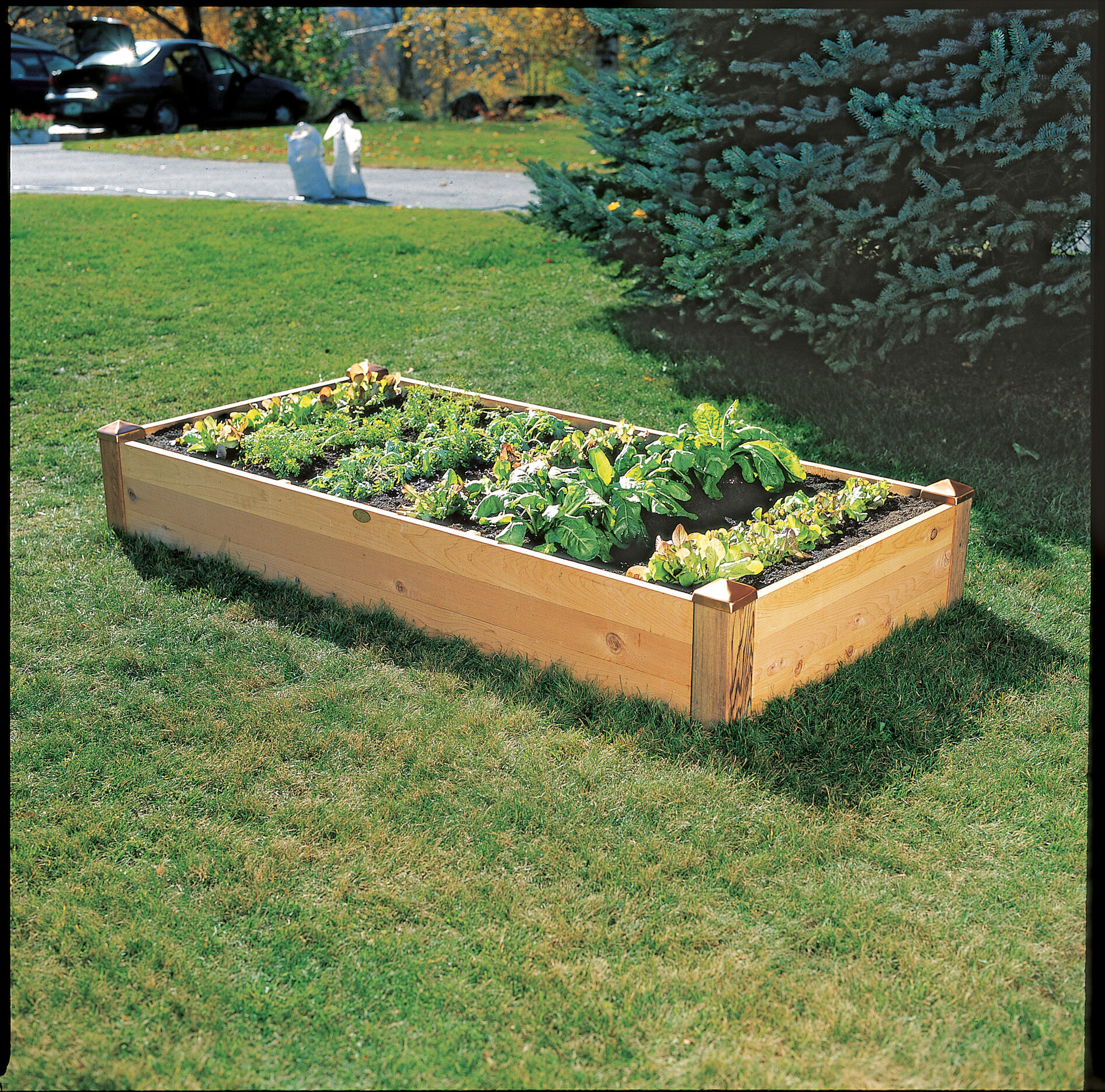 raised bed corners diy raised garden beds gardener 39 s