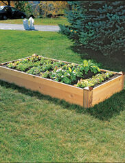 Copper Cap Raised Bed