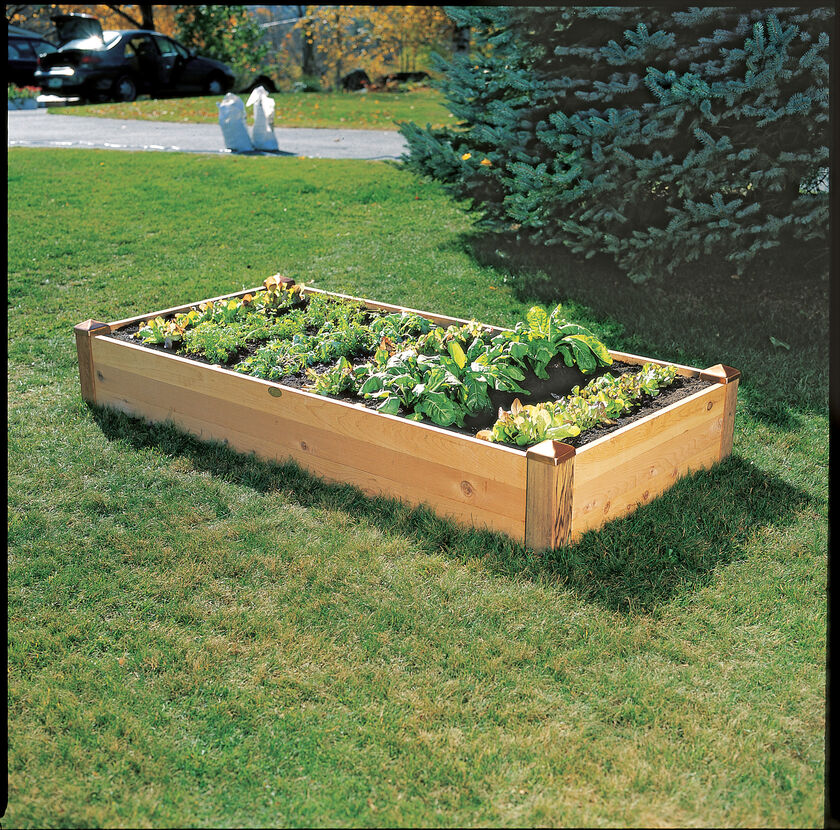 Copper cap raised bed vegetable garden bed Raised garden beds