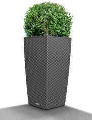Cubico Cottage Wicker Self-Watering Planter