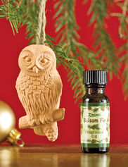 Owl Diffuser with Balsam Oil
