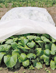 All-Purpose Garden Fabric