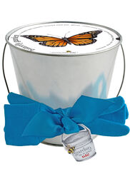 Kid's Butterfly Bucket Garden