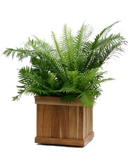 Estate Teak Square Planters