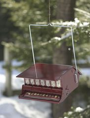 Red Squirrel-Proof Birdfeeder