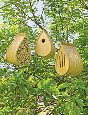 Bamboo Habitat Collection, Set of 3