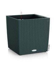 Cube Cottage Wicker Self-Watering Planter