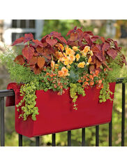 Viva Self-Watering Balcony Railing Planter