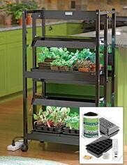 Compact 2-Tier SunLite® Garden Jump Start Kit