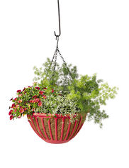 AquaSav™ Colorful Hanging Basket