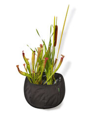 Water Wall Pocket Pond Planter