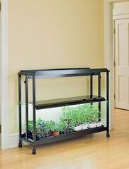 Standard Floor SunLite® Garden