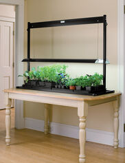 Standard Tabletop SunLite® Garden
