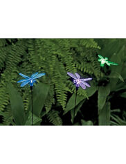 Dragonfly Solar Lights, Set of 3
