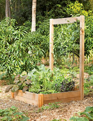 *Rustic Raised Bed Sold Separately