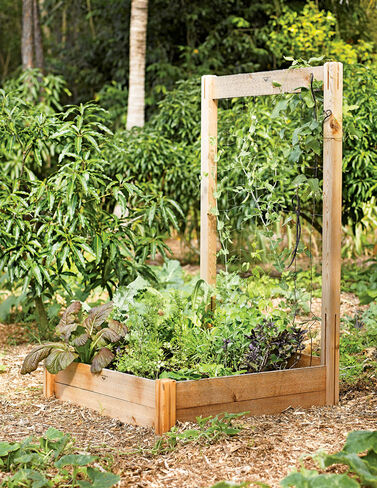Trellis for Rustic Cedar Raised Bed Raised Bed, Raised Garden Bed, Garden Bed, Raised Garden, Container Gardening, Garden Containers