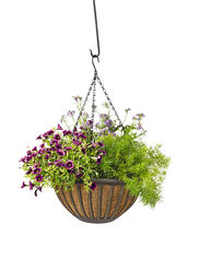 AquaSav™ Colorful Hanging Basket