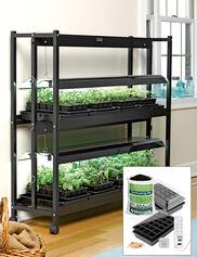 Standard 2-Tier SunLite® Garden Jump Start Kit