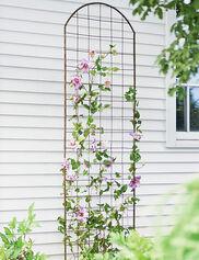 Jardin Flower Trellis