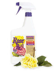 Rose Rx 3-in-1