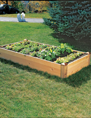 Copper Cap Raised Bed, 3' x 6' Raised Bed, Raised Garden Bed, Garden Bed, Raised Garden, Container Gardening, Garden Containers