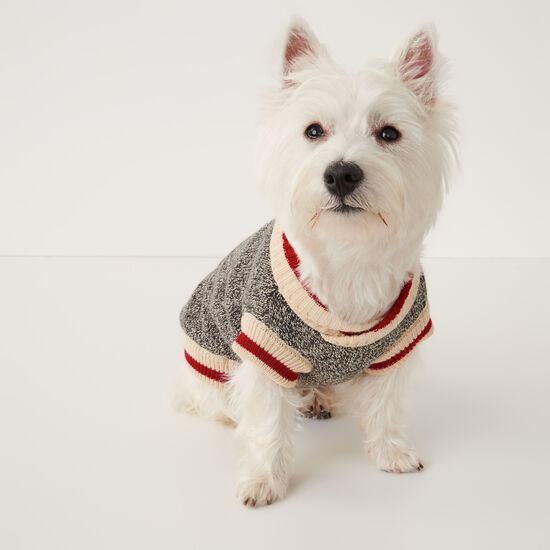 Roots X Canada Pooch Sweater- Size 14