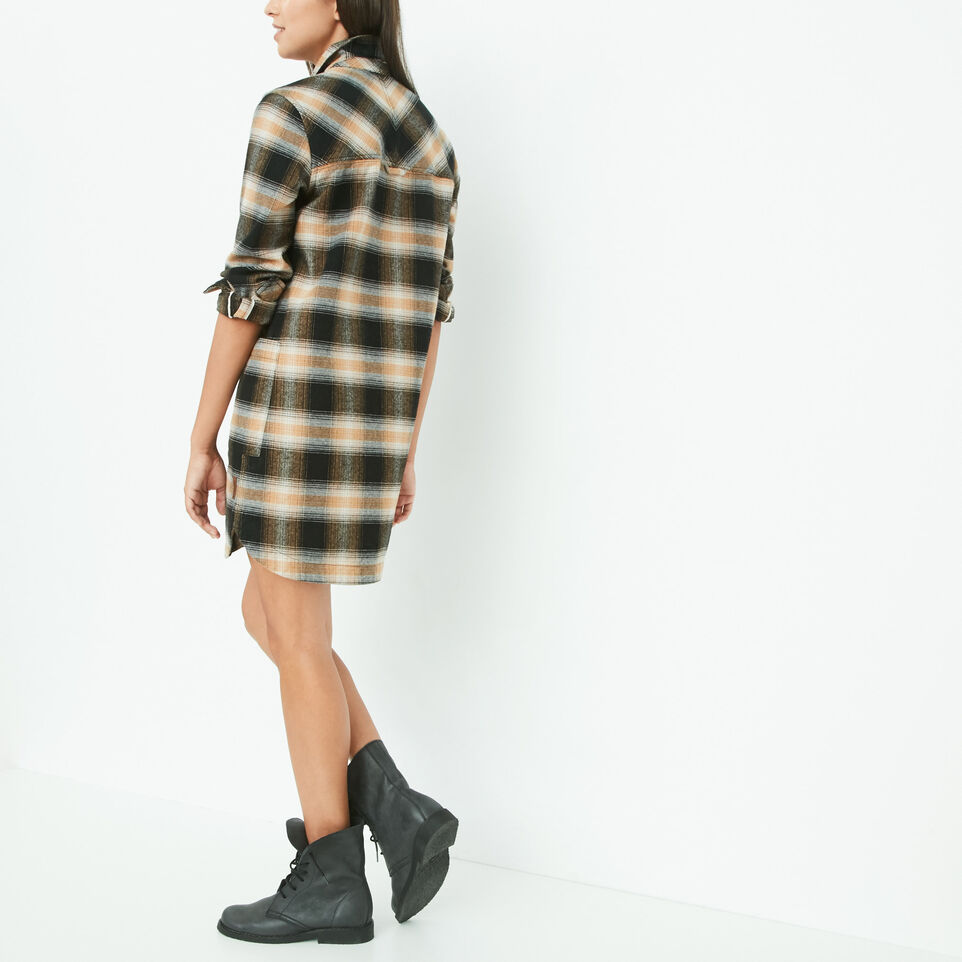 Roots-undefined-Sage Shirt Dress-undefined-D