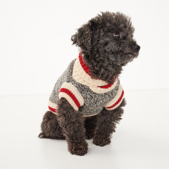 Roots-Men Roots Home-Roots X Canada Pooch Sweater- Size 12-Salt & Pepper-A