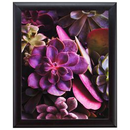 Purple Floral Succulents 20x24 Print With Matted Frame, , large