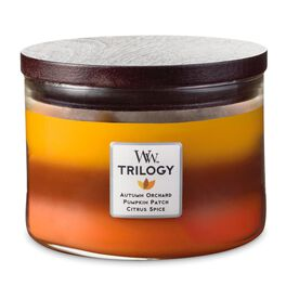 Autumn Comforts Trilogy WoodWick® Candle, , large