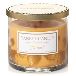 Harvest® Large 2-Wick Tumbler Candle by Yankee Candle®, , large