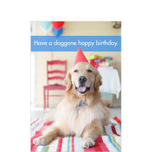 Doggone Happy Birthday