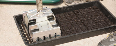 Soil Block Making - A Better Way to Start Seedlings