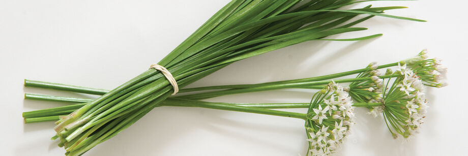 Chinese Leeks (Garlic Chives)