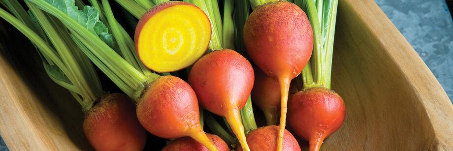 蔬菜销售betway体育投注