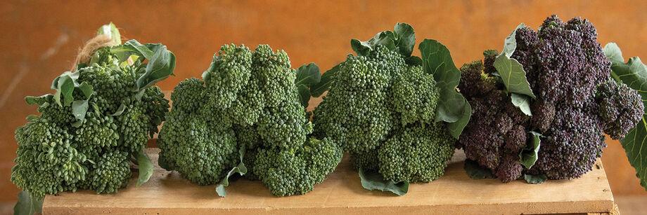 Mini Broccoli