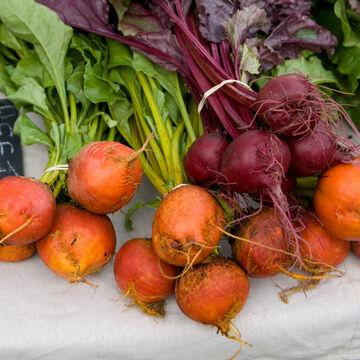 Tender Beet Roots & Greens
