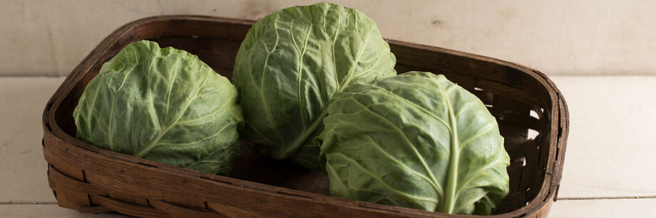 Fresh Market Cabbage