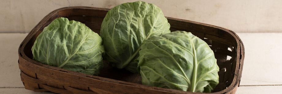 Fresh Market Cabbage