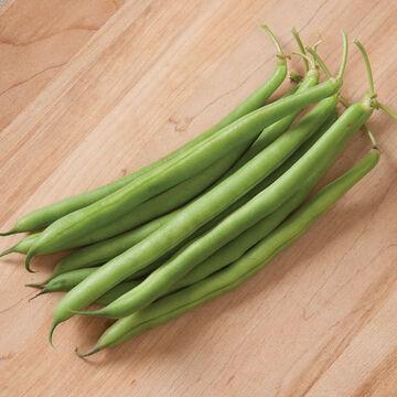 Delicious & Dependable Beans