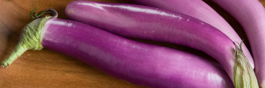 Eggplant Asian 55