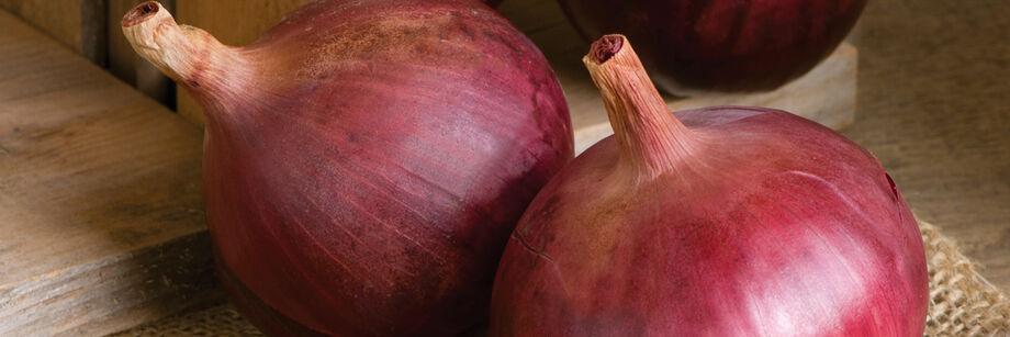 Full-Size Onions