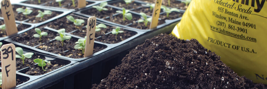 Soilless growing mixes johnny 39 s selected seeds for Soil less farming