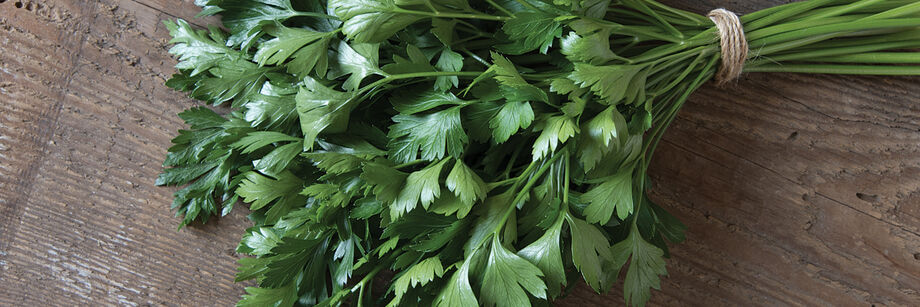 Leaf Parsley
