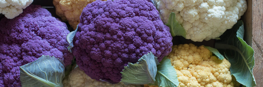 Standard Cauliflower