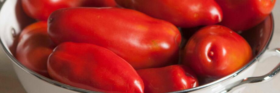 Paste - Plum - Roma - Tomatoes