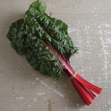 The Best in Organic